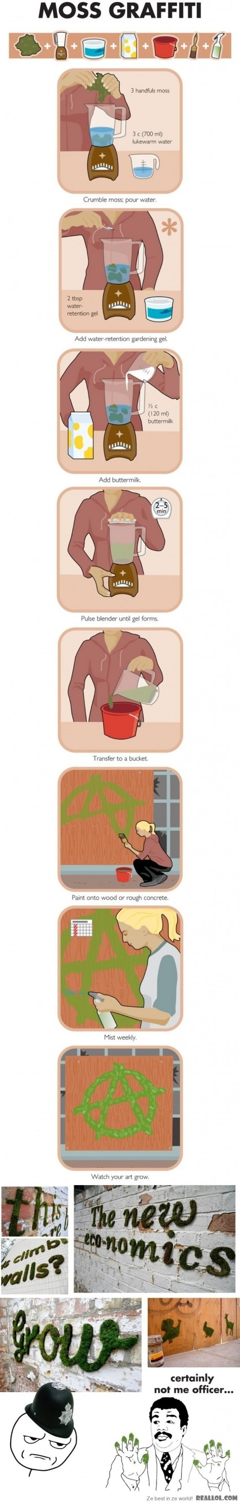 Moosfiti Anleitung